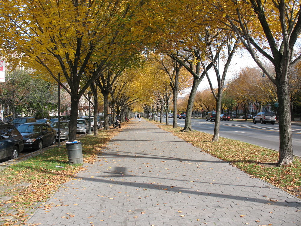Eastern Parkway, Fall