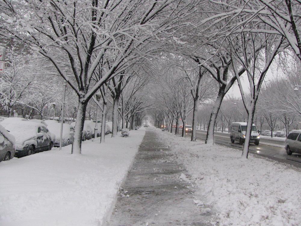 Eastern Parkway, Winter