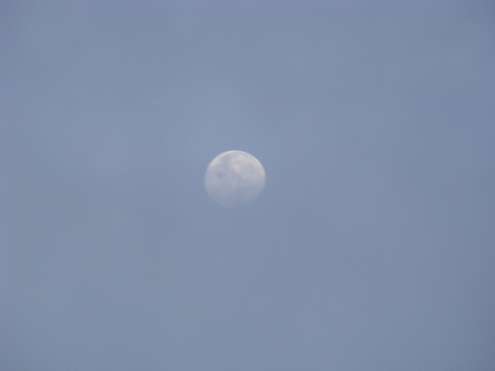 Oct1011_laca_moon.JPG