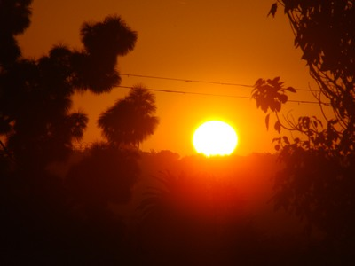 Sunrise bright over LA from Mar Vista.   What we need is more people who specialize in the impossible.   … Theodore Roethke