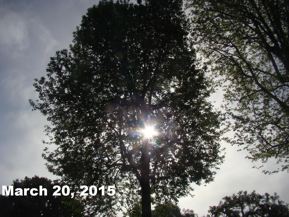 Mar2015_bwca_3.JPG