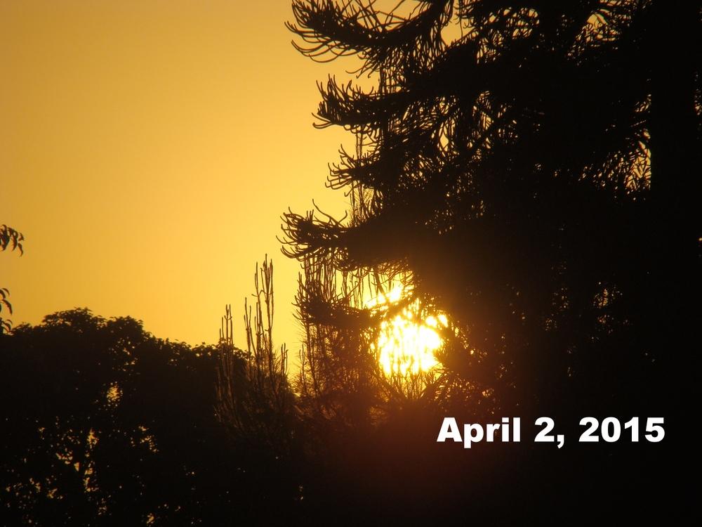 Apr0215_laca_4.JPG