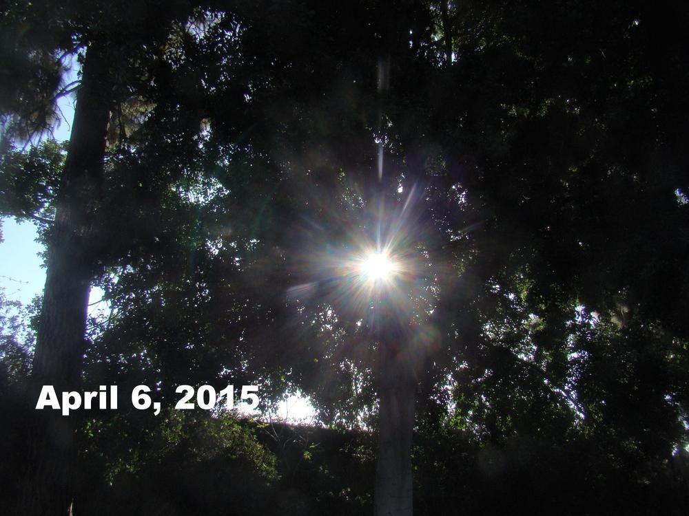 Apr0615_bwca_2.JPG