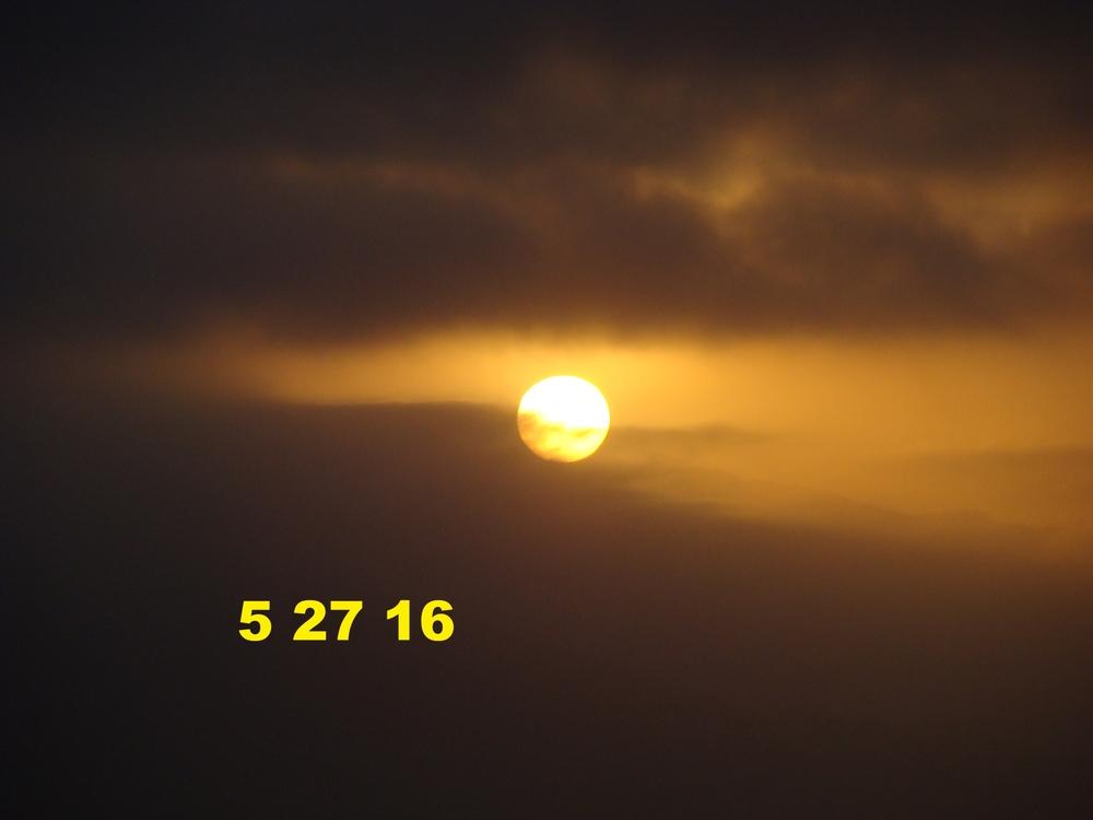 May2716_muca_3.JPG