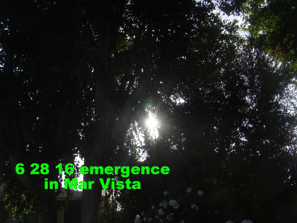 Jun2816_laca_3.JPG