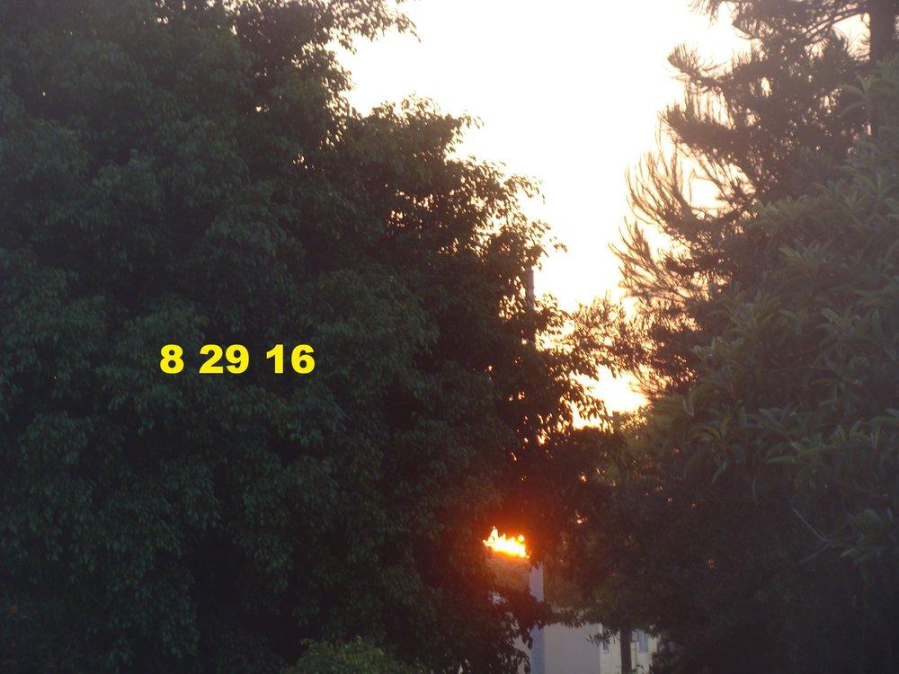Aug2916_laca_4.JPG