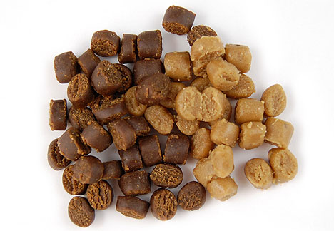Small treats for training dogs.