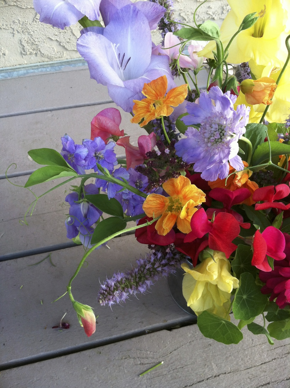 Garden arrangement from last summer with sweet peas, nasturtium, larkspur, oregano and gladioli