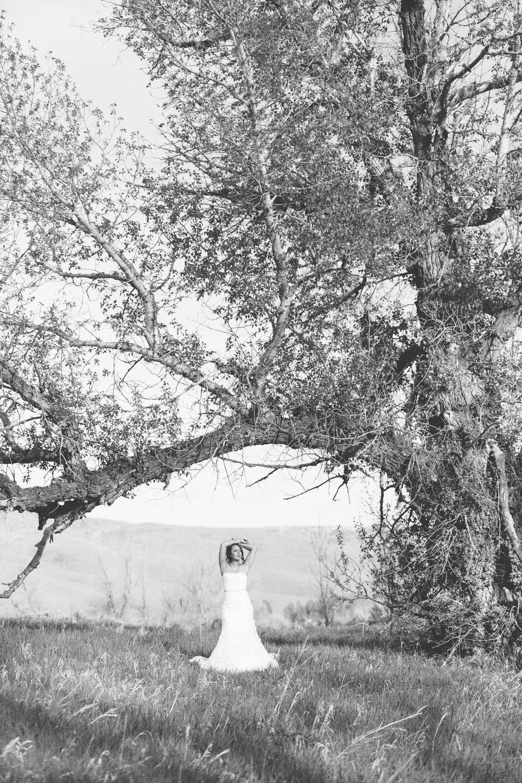 Bridals-7380.jpg