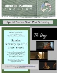 GreyFilmScrn.jpg