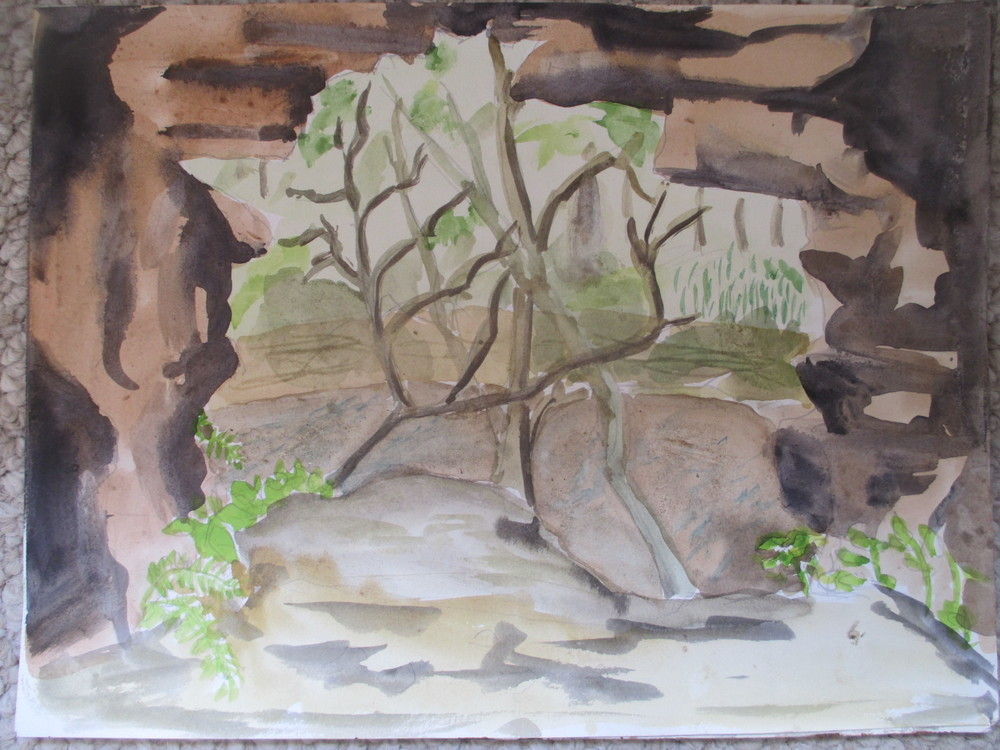 cliff cave, central missouri 2010?.jpg