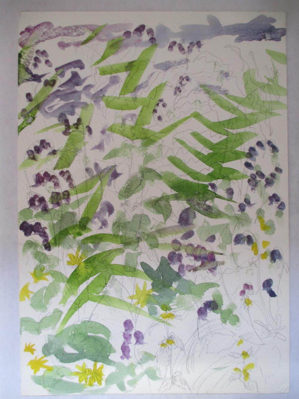 cornwall flower study 2008?.jpg