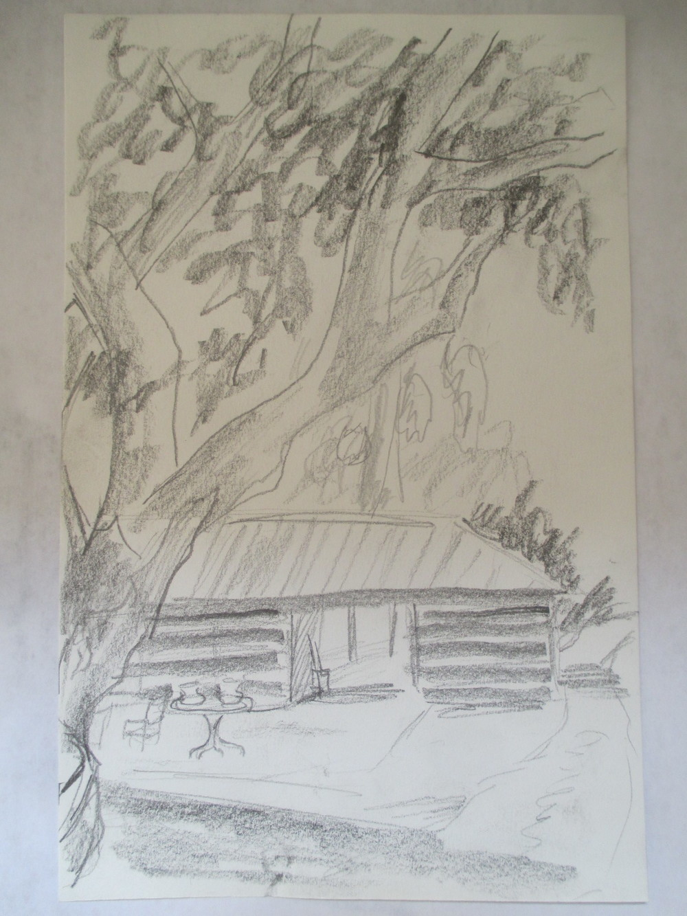 horse barn and eucalyptus tree, california 2013.jpg