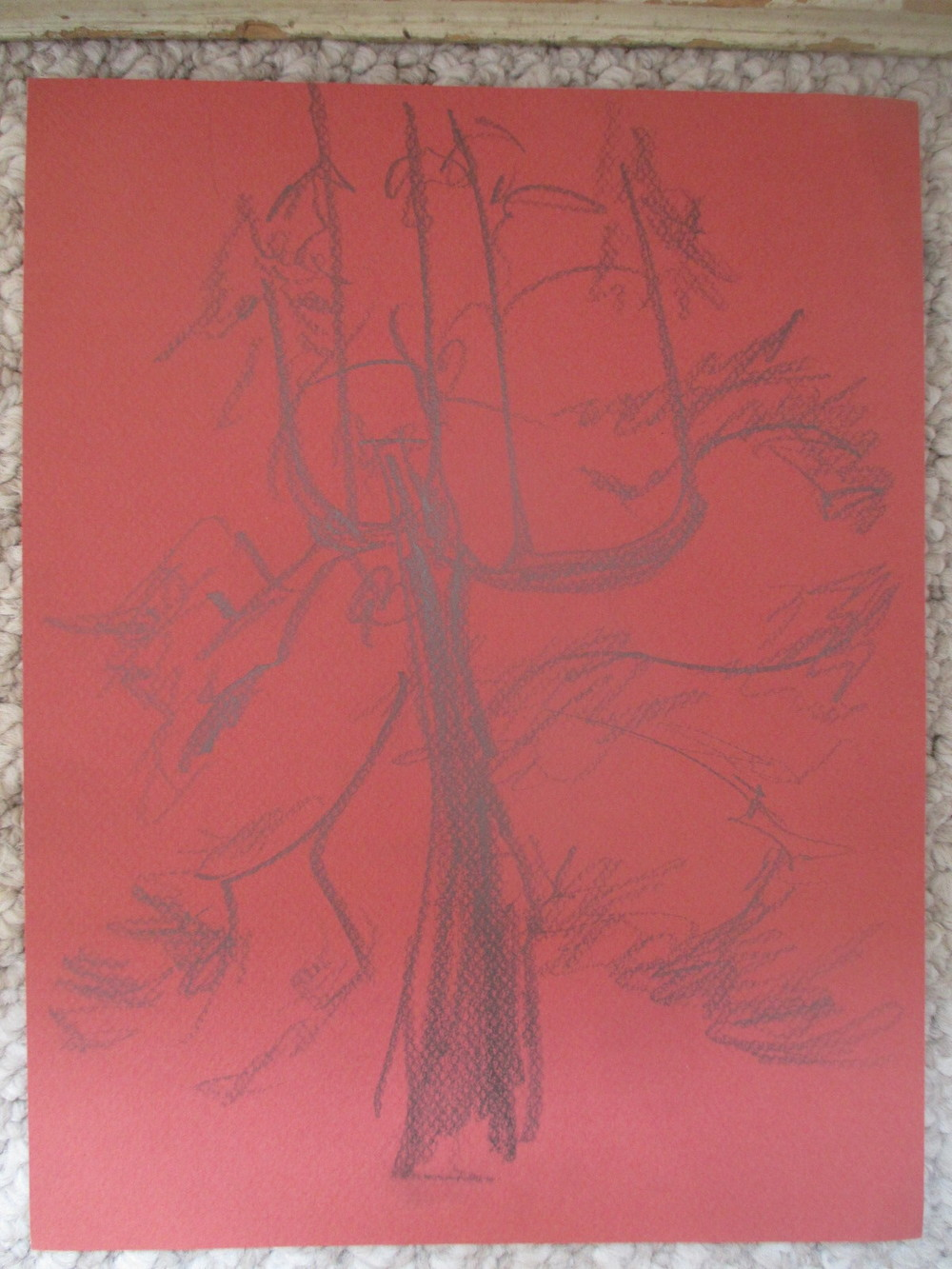 redwood tree on red paper 2013.jpg