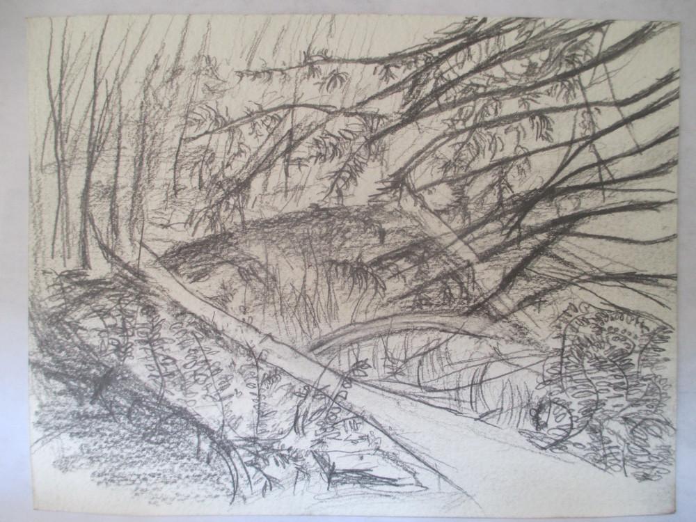 woodland kansas 2008-2010.jpg