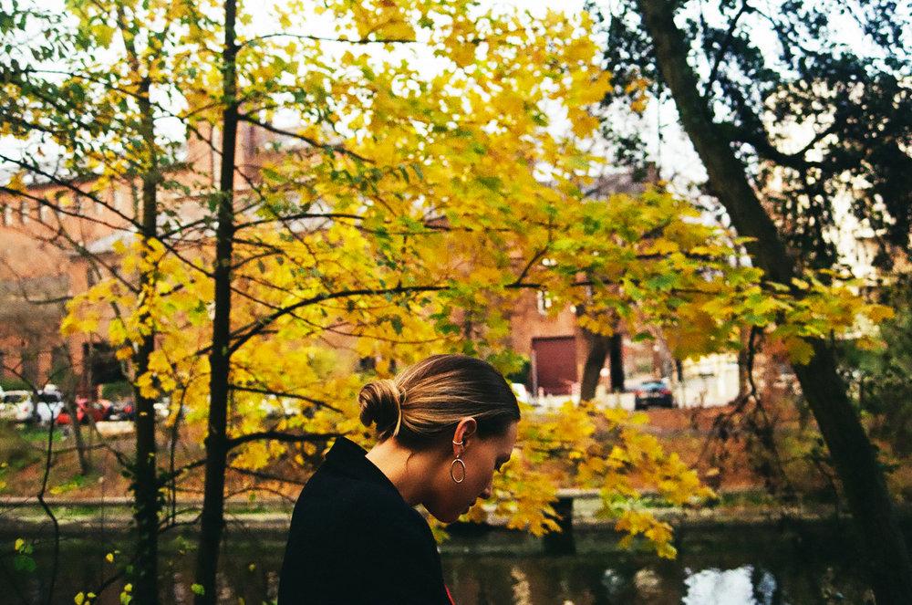 Berlin Leaves.jpg