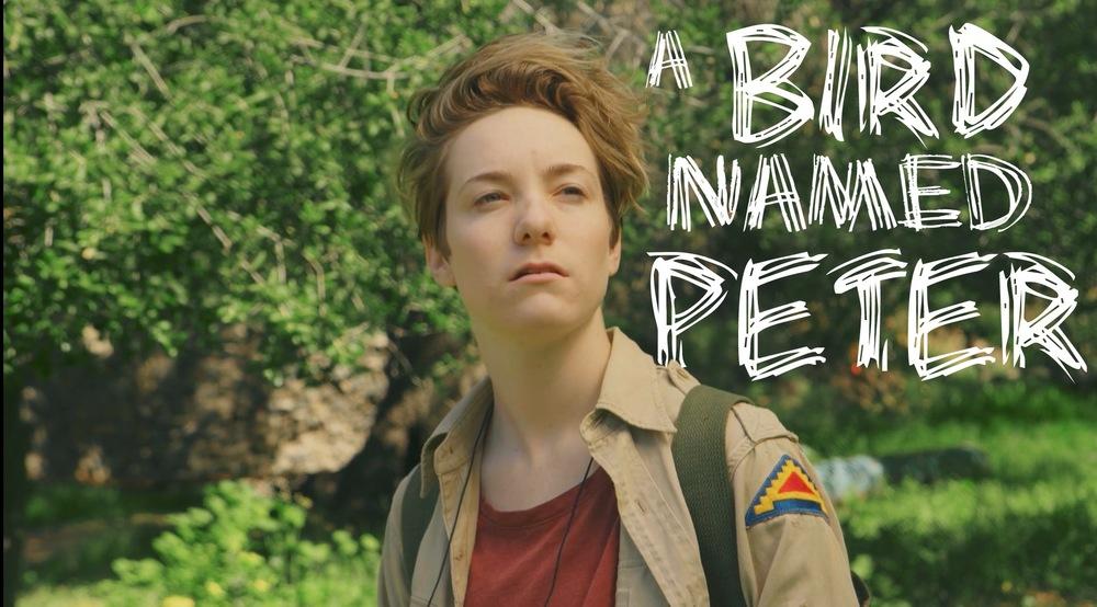 A Bird Named Peter