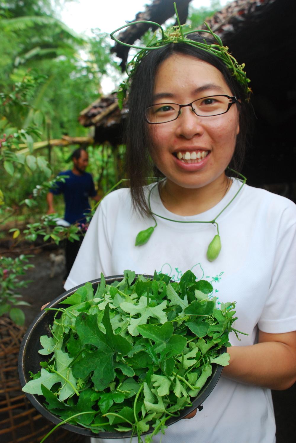 農場中隨處採集的野菜,翠綠新鮮,可以安心食用。
