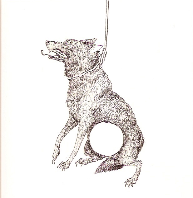 wolfnoose1.jpeg