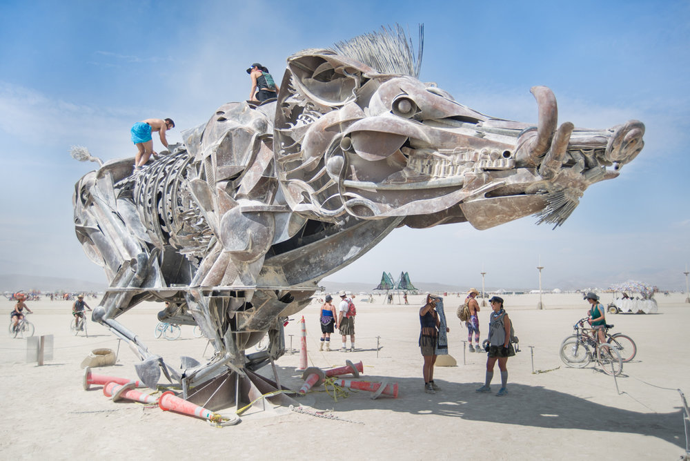 160902_0364_BurningMan2016.jpg