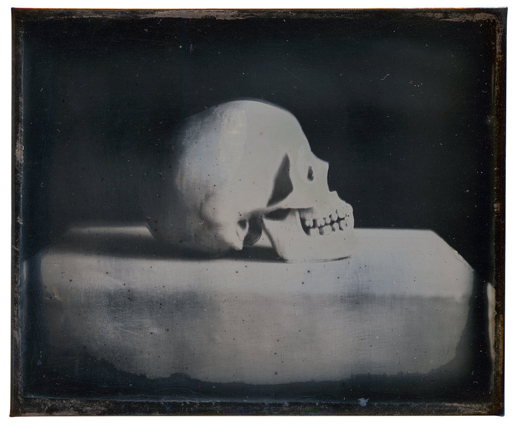 Skull,_Copper,_Silver,_Gold_(Daguerreotype),_11x9_cm,_2013.jpg