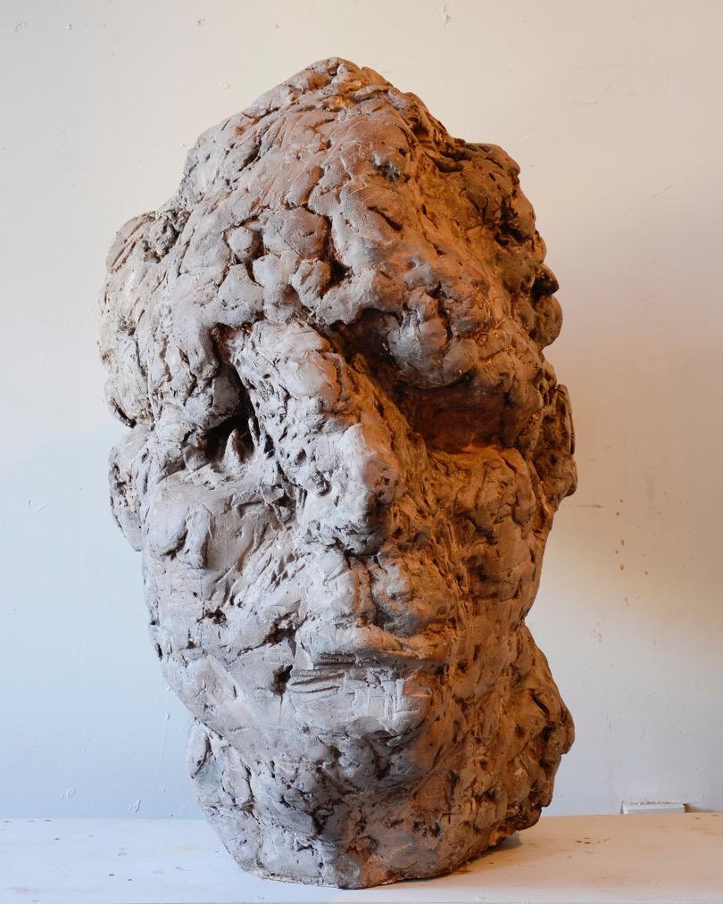 head #1213, 2012, Hydrocal, 45x32x39 in.100Hx74Wx97D cm .jpeg