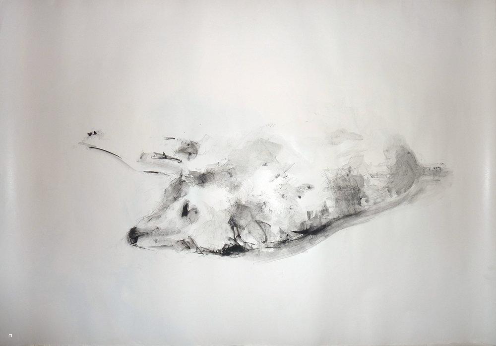 dog4print05.jpg
