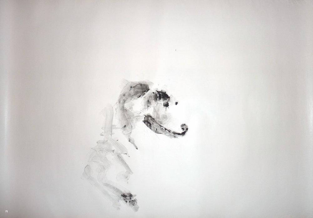 dog4print02.jpg