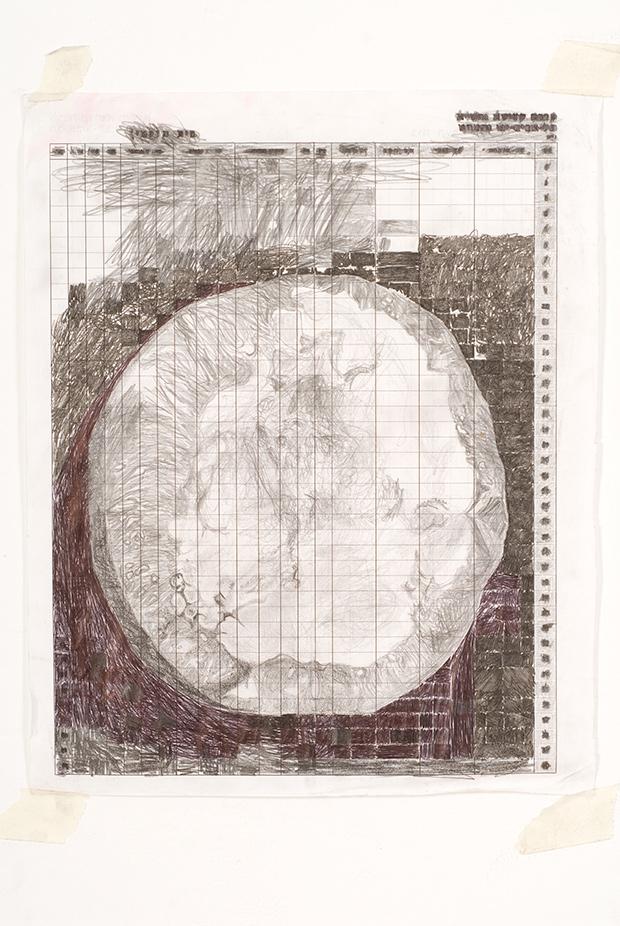 גלה-ויצמן-עובש-(עגבניה)-2011-טכניקה-מעורבת-על-נייר-39X31X-סמ.jpg