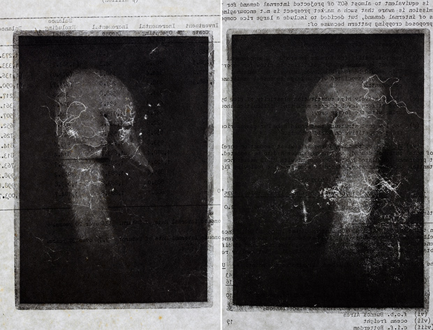 2--barvazot---שתי-ברווזות,-תחריט,-צמר-פרום-וצילום,-2012.jpg