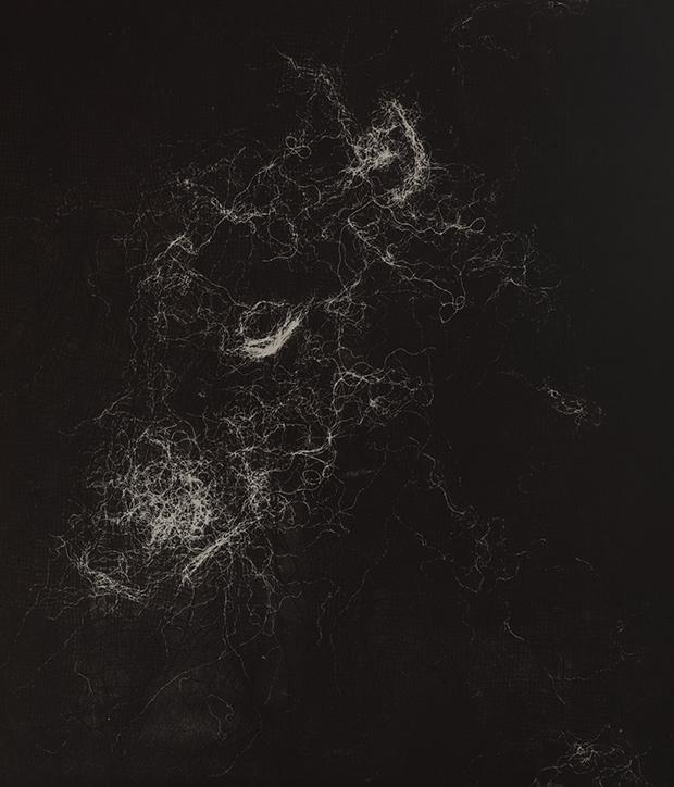 hamor-1.jpg