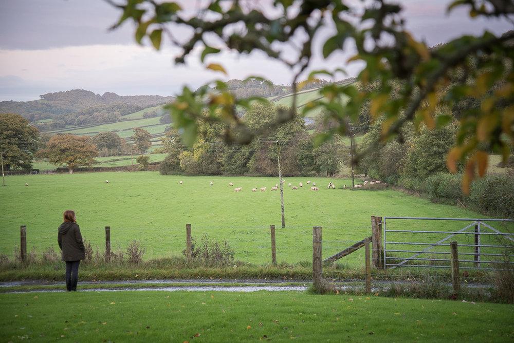 Wales oktober 2017 web-7.jpg