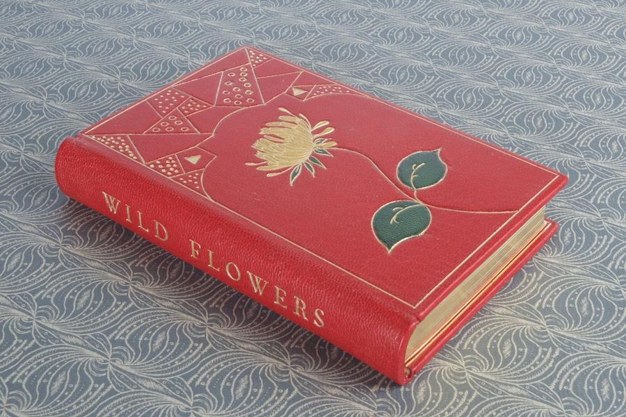 Wild Flower book.jpg