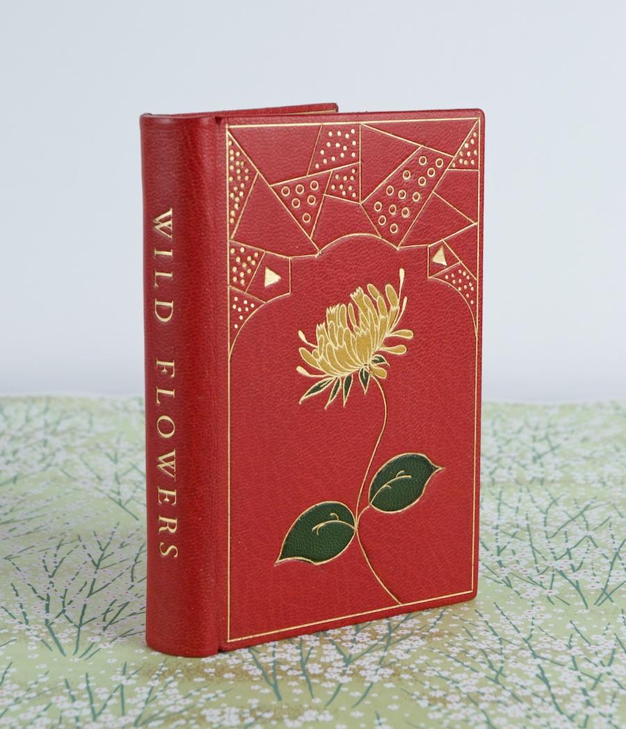 Wild Flower Book 2.jpg