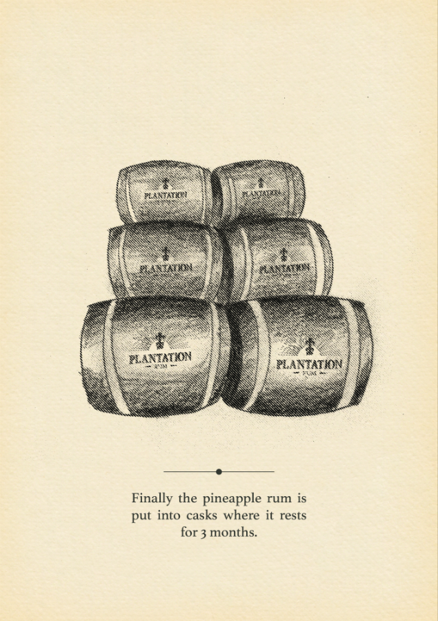 Plantation-Rum-Pineapple-scene-12.png