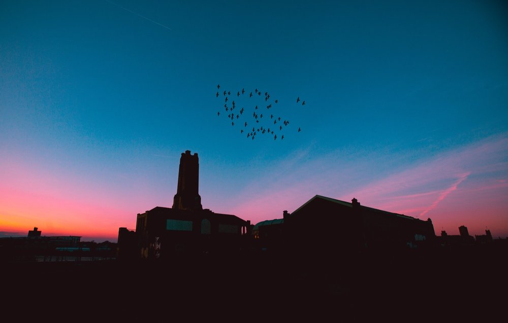 Photo by  Ryan Loughlin  • these are not Vaux's swifts at Chapman Elementary, but the photo conveys the feeling of beauty at the scene :)