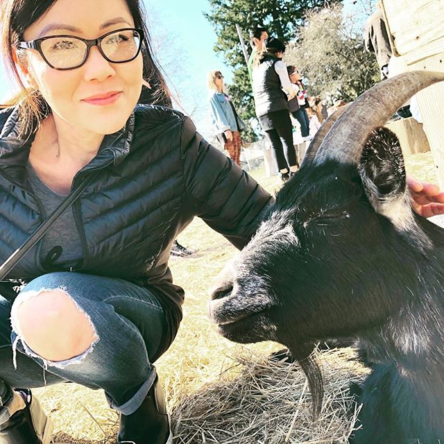 Made a quick goat-stop this past weekend on the way to do some errands. 😍 :: One of the things we love about Portland....you can actually do that...make a quick goat-stop! 🐐 :: Keep swiping...😂😴 . . . . #pdx #portland #belmontgoats #goatlover #cutegoats #animallover #podcast #podcasts #lgbtpodcast  #spirituality #loveislove #lgbt #gay #lesbian #lgbtq #lgbtqi