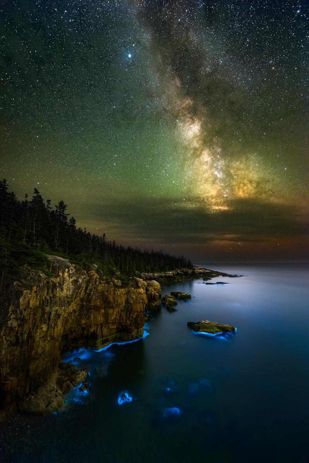 Glowing Coast