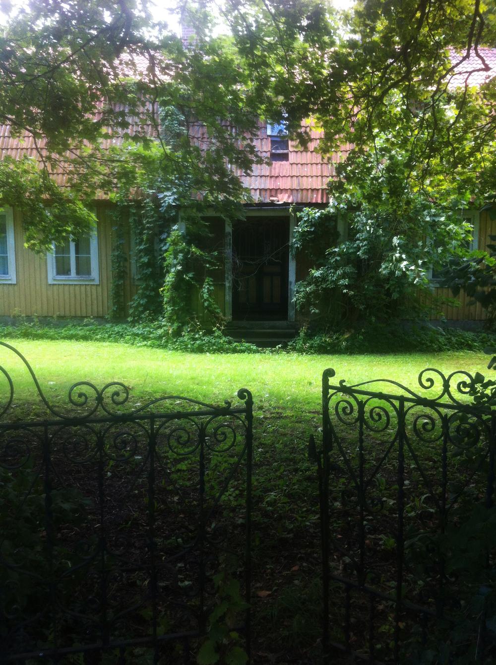 Vedbend vogter indgangen til et tomt charmerende hus i byen.