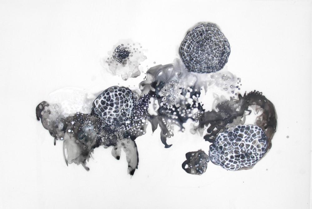 Floating World 2 2011 ink and acrylic on mylar  36 by 24 inches