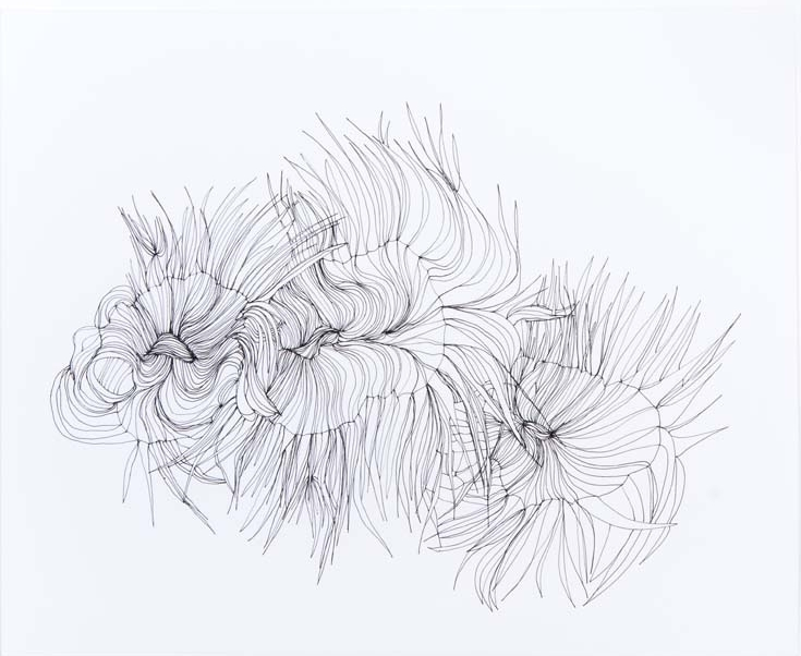 Untitled 1 2012 ink on paper 9 by 11 inches