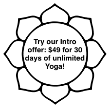 lotus intro offer.png