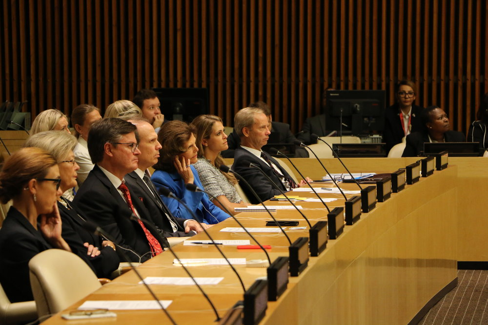 Images UN High Level Meeting 5.JPG