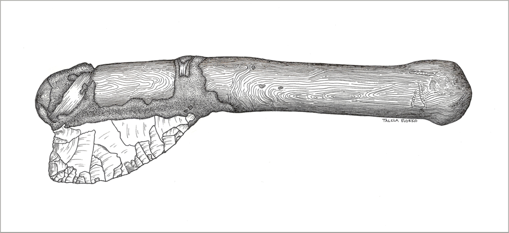 Hafted Knife_Grand Staircase-Escalante National Monument_Talela FLorko.jpg - Copy.jpg.png