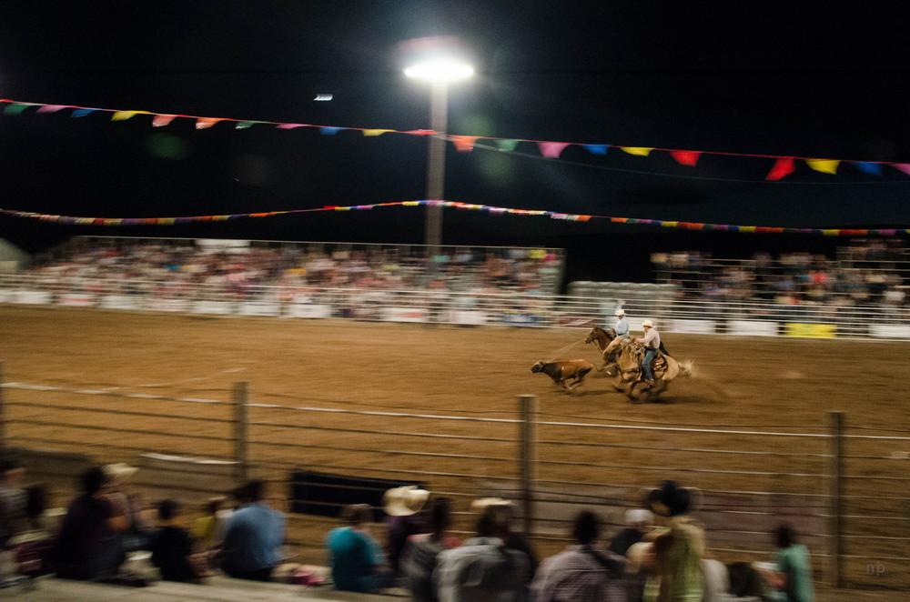 Team Roping. Longford Rodeo 2014