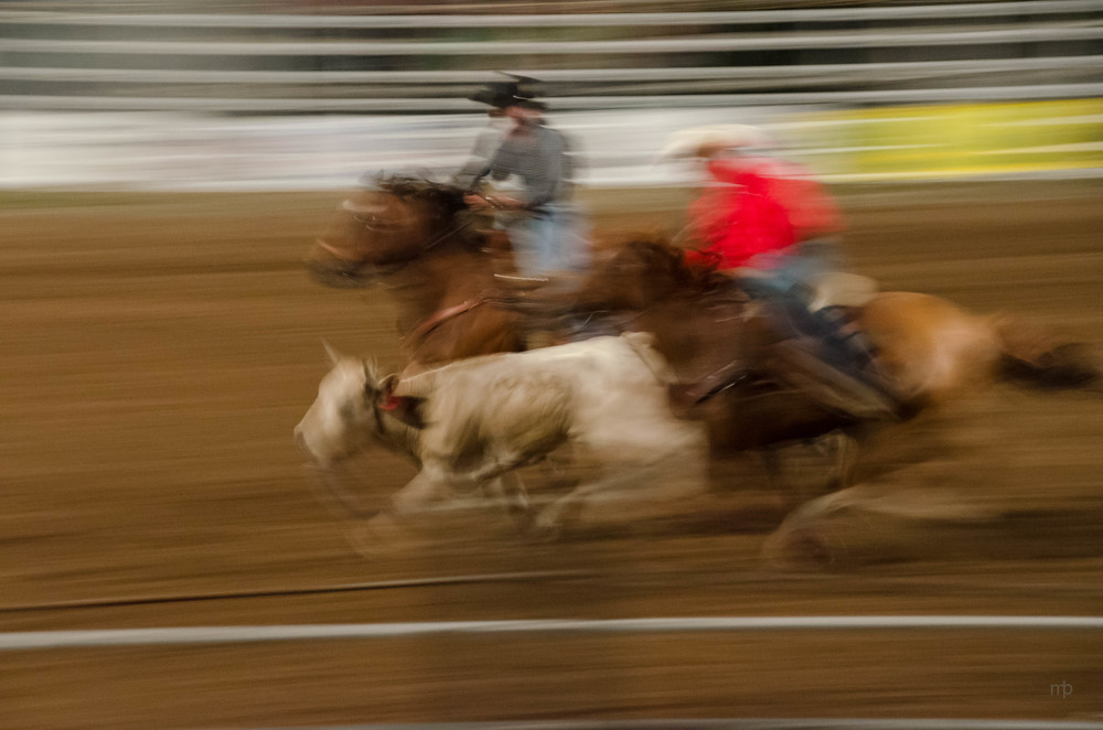 Riding to Wrestle.  Longford Rodeo 2014.  Nikon D7000, Tamron 18-270 mm, ISO 3200, 100 mm, f/8.0, 1/8 sec.