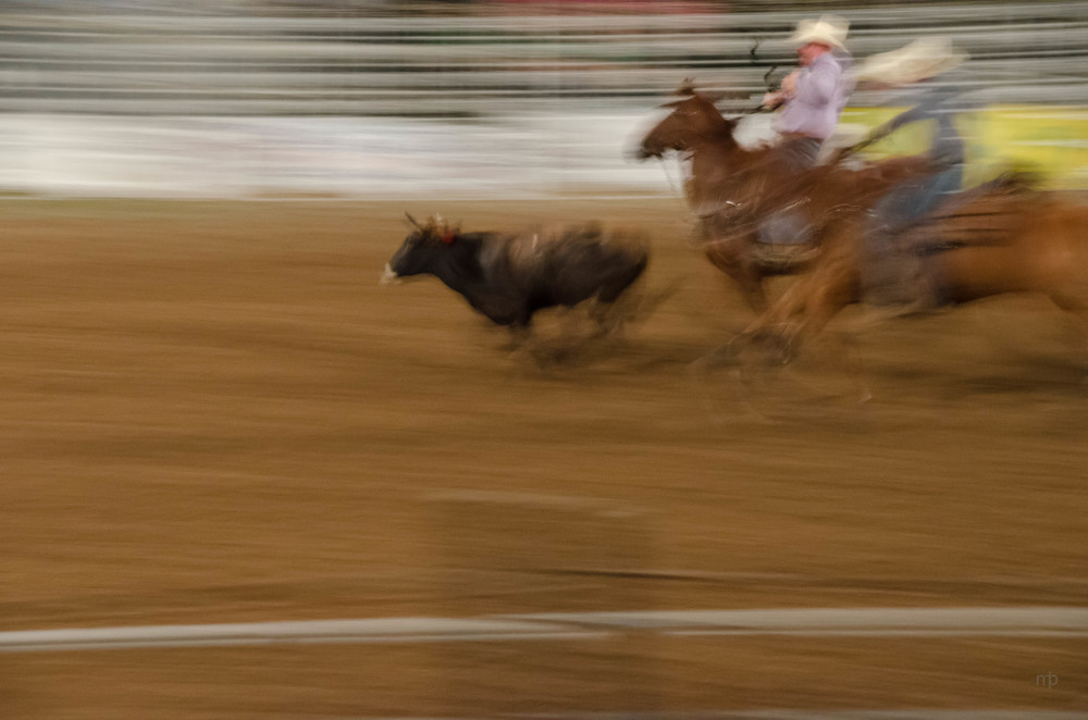 Riding to Wrestle.  Longford Rodeo 2014.  Nikon D7000, Tamron 18-270 mm, ISO 3200, 100 mm, f/8.0, 1/6 sec.