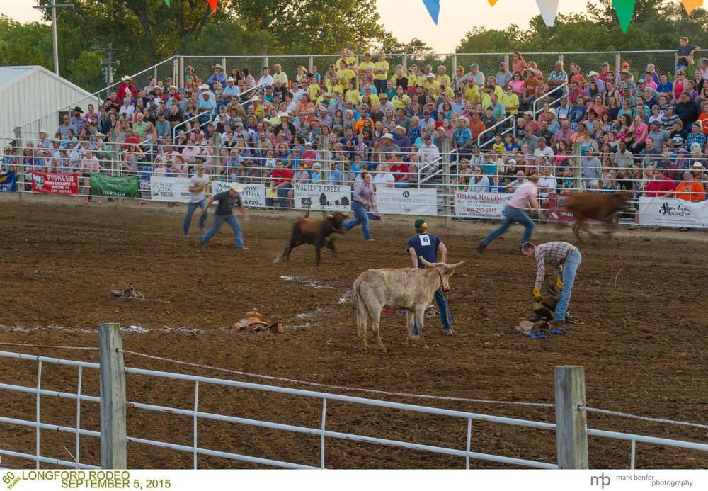 Longford Rodeo-9.jpg