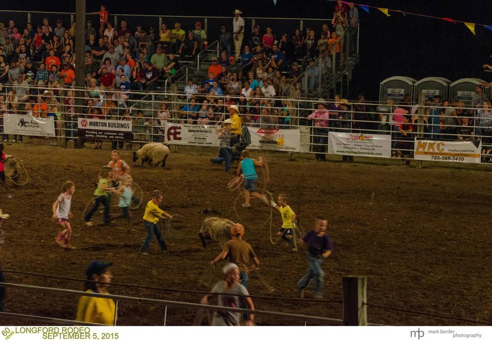 Longford Rodeo-44.jpg