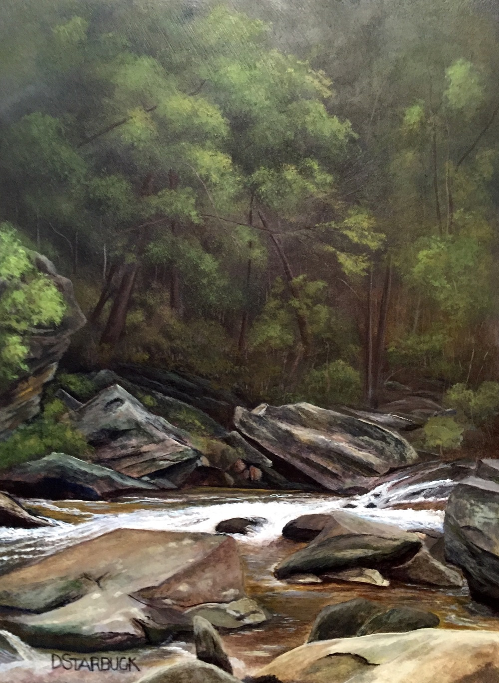 """Looking For Tight Lines"" Graggs Creek, Blue Ridge Parkway, North Carolina  Original: Acrylic on Panel, 10"" x 13.5"""